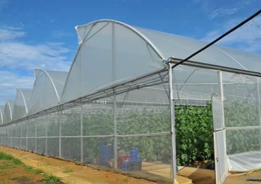 lưới che nắng hcm là công cụ không thể thiếu của người nông dân
