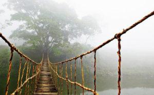 Check – in cây cầu mây độc đáo nhất Sapa