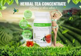 Nguyên tắc uống trà xanh hỗ trợ giảm cân cần biết